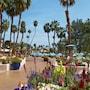 Omni Rancho Las Palmas Resort & Spa photo 19/41