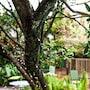 Habitat Suites photo 4/37