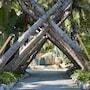 Cheeca Lodge & Spa photo 24/41
