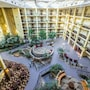 Embassy Suites Piscataway - Somerset photo 10/41