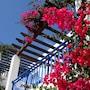 Aliathon Aegean Village photo 12/41