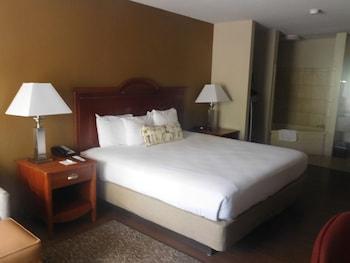 Best Western Shenandoah Inn - Guestroom  - #0