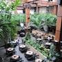 Balmoral Hotel photo 25/41
