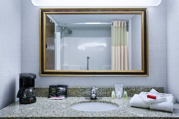 Ramada Lansing Hotel And Conference Center - Bathroom  - #0