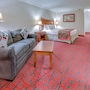 Ramada by Wyndham Metairie New Orleans Airport photo 17/41