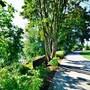 Rodeway Inn Willamette River photo 38/38