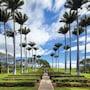 The Westin Hapuna Beach Resort photo 12/41
