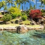 Hanalei Bay Resort photo 20/41