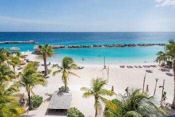 庫拉索島獅子潛水和海灘渡假村飯店