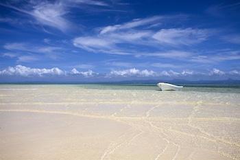 Jean-Michel Cousteau Resort Fiji - Beach/Ocean View  - #0