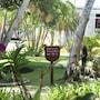 Grand Paradise Playa Dorada - All Inclusive photo 18/41