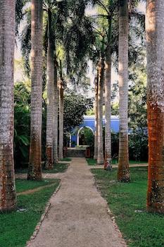 Hacienda San Jose, A Luxury Collection Hotel, San Jose - Property Amenity  - #0