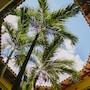 Occidental Cozumel - All Inclusive photo 8/41