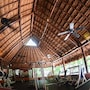 Bel Air Collection Resort & Spa Riviera Maya photo 20/41