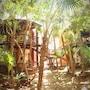 Bel Air Collection Resort & Spa Riviera Maya photo 38/41
