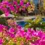 El Encanto Inn & Suites photo 4/41