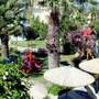 Atrium Palace Thalasso Spa Resort & Villas photo 40/41