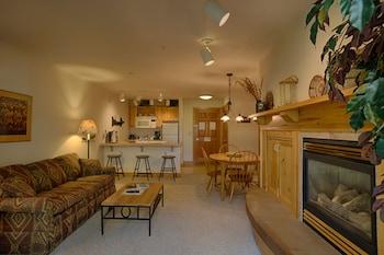 Grand Targhee Vacation Rentals - Living Area  - #0