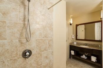 Comfort Suites Clearwater - Dunedin - Bathroom  - #0