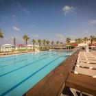Rimonim Palm Beach
