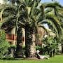 Pierre & Vacances Résidence Les Jardins Ombragés photo 4/24