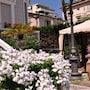 Hotel Esedra photo 6/34