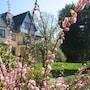 Hotel Pannenhuis photo 31/36
