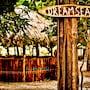 Dreamsea Surf Camp photo 23/41