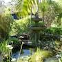 Pagoda Lodge photo 14/41