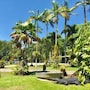 Lync Haven Rain Forest Retreat
