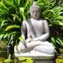 Vatu Sanctuary photo 10/29