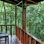Jaguarundi Lodge photo 11/39