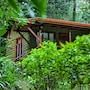 Jaguarundi Lodge photo 22/39