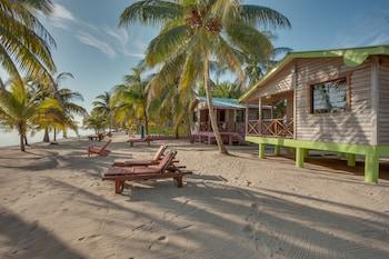 Palm Cove Cabins