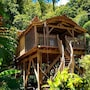 West Indies Cottage photo 31/41