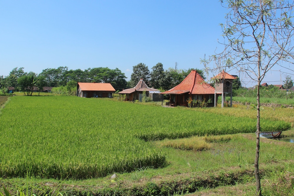 Alamanda Villa's, Adventure & Pool