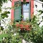 Haus Wartenberg photo 26/41