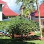 Rio Vista Resort photo 16/41