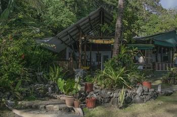 La Leona Eco Lodge
