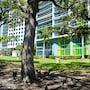Icon Residences By Sunnyside Hotel and Resorts photo 40/41