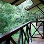 La Selva Biological Station photo 4/41