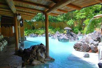 Photo for Kirishima Kokusai Hotel in Kirishima