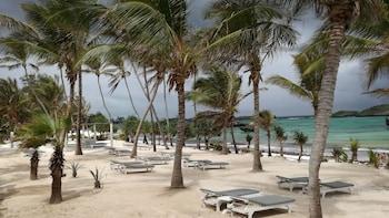 サン パーム ビーチ リゾート