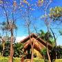 PuraVida Pai Resort photo 32/41