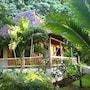 Bosque del Cabo Rain Forest Lodge photo 18/41