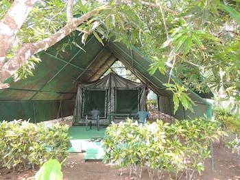 Corcovado Adventures Tent Camp