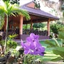 Ban Rai Tin Thai Ngarm Eco Lodge photo 13/16