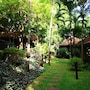 Pasak Hillside Resort photo 6/41