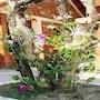 Truong Linh Phu Quoc Resort photo 11/18
