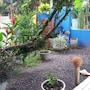 Pousada Mar Azul photo 3/19